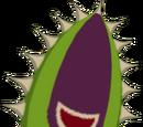 Boko Baba Seed