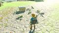 Amiibo Zelda BotW function.png