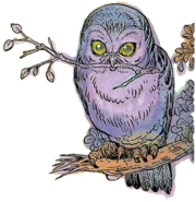 Owl Artwork 6 (Link's Awakening)
