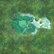 Faron Woods Aerial View (Skyward Sword)