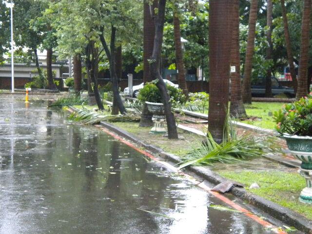 檔案:凡那比颱風的摧殘-南台科技大學11.JPG