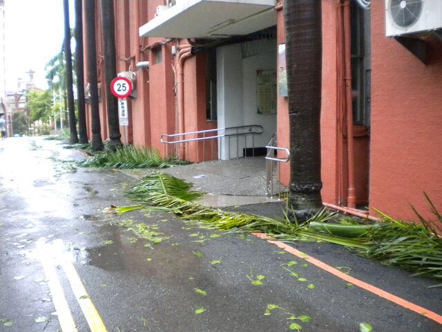 檔案:凡那比颱風的摧殘-南台科技大學5.jpg