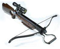Modern Recurve Crossbow