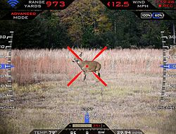 File:250px-Precision Guided Firearm Heads Up Display.jpg