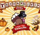 Turkey Pet