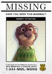 Emmit Otterton missing poster