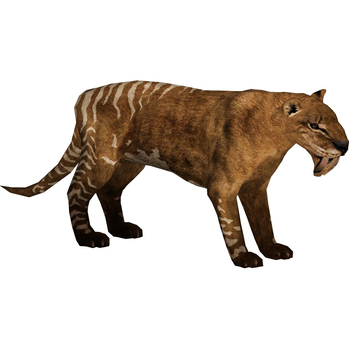 Thylacosmilus_(Tyranachu) on Zoo Animals Names