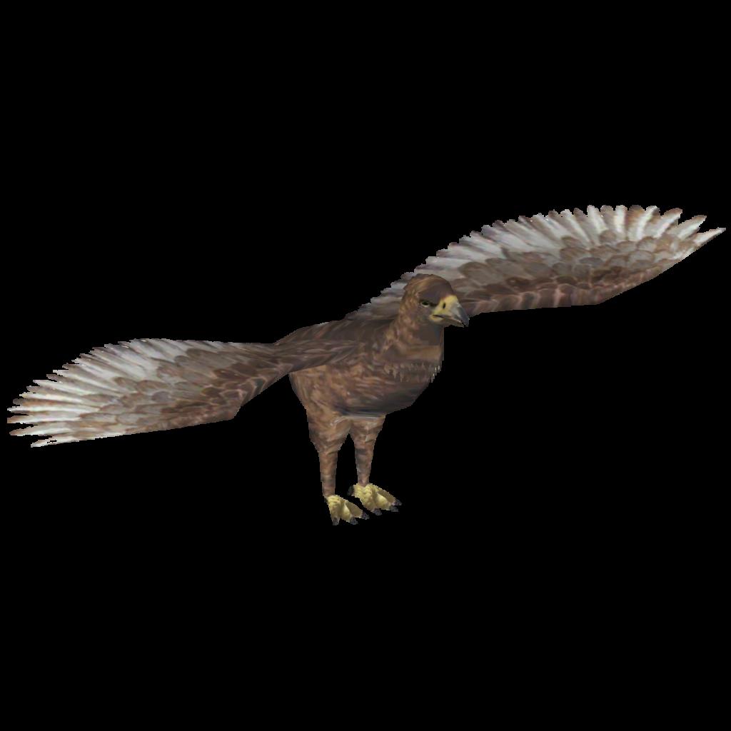 Haast's Eagle (Ringo) | ZT2 Download Library Wiki | FANDOM ...