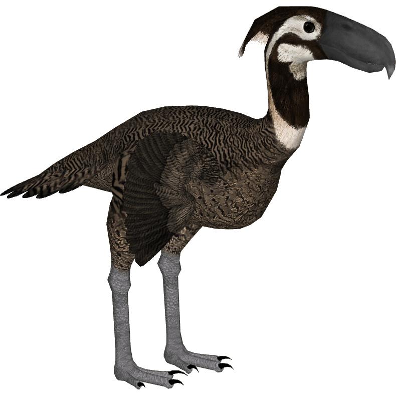 Category Terror Birds Zt2 Download Library Wiki Fandom