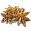 SeasonalSpices Anis-icon