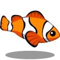 ColorfulFish Clown Fish-icon