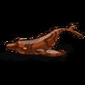 KoaWood Whale-icon