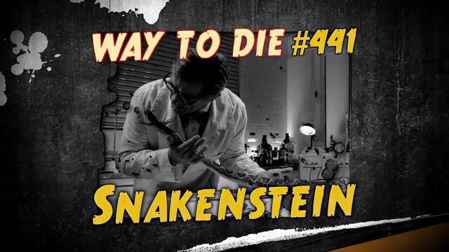 File:Snakenstein.png