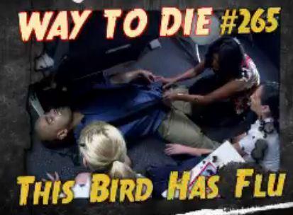 File:This Bird Has Flu.JPG