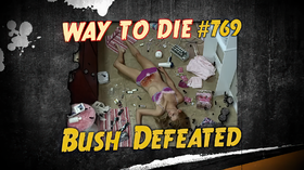 Bush Defeated