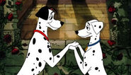 Pongo and Perdy