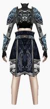Fujin-7 star armor-female-back