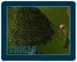 File:Skills.png