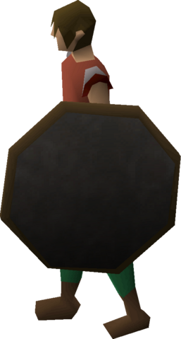 File:Mirror shield equipped.png