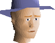 File:Blue hat chathead.png
