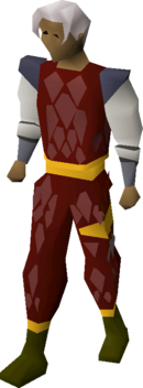 Red d'hide (g) set equipped