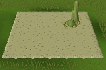 Desert habitat built