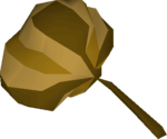 Grand seed pod detail