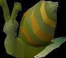 Giant snail