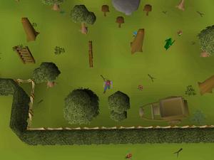 Hot cold clue - Tree Gnome Village