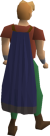 Blue cape equipped