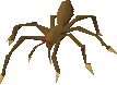 File:Chocolate spider.png