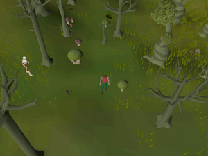 Hot cold clue - Haunted Woods