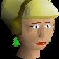 File:Santa mask (female) chathead.png