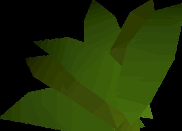 File:Ranarr weed detail.png