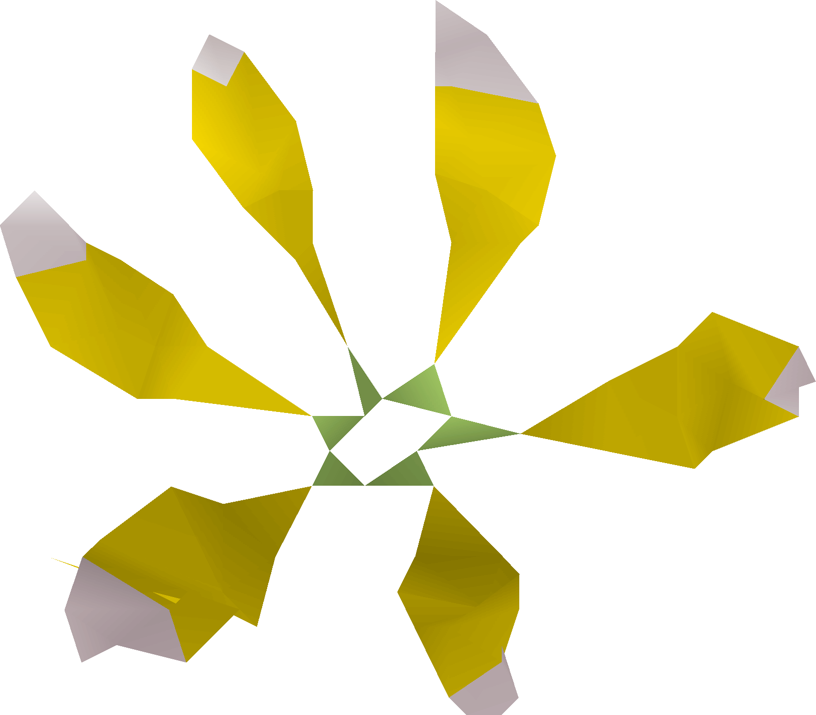 Star flower detail
