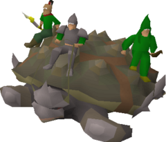 Tortoise with riders