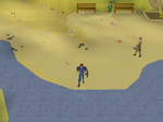 Emote clue - cry catherby beach
