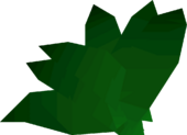 Guam leaf detail