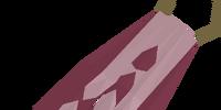 Team-10 cape