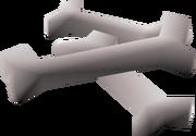 Babydragon bones detail