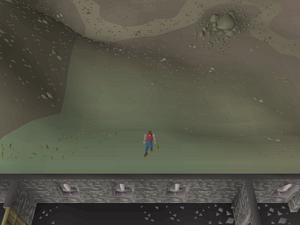 Hot cold clue - north of Warriors Guild