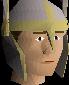 Helm of neitiznot chathead