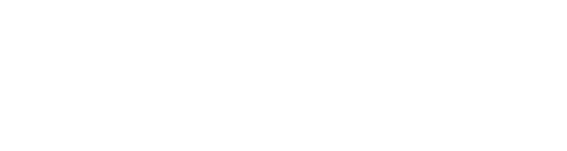 File:2ne1 logo white.png