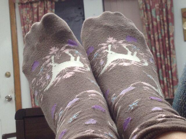 File:Meh Feet.jpeg