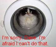 File:180px-Cat1.jpg