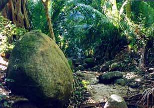 Madagascar Boulder