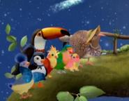 3rd & Bird Starry Night! Scene 5