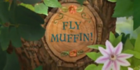 Fly Muffin!