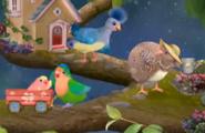 3rd & Bird Starry Night! Scene 2