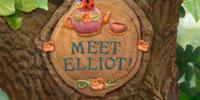 Meet Elliot!